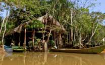El Orinoco Eco Camp
