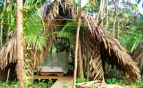 Warao style hut in the Orinoco Eco-camp